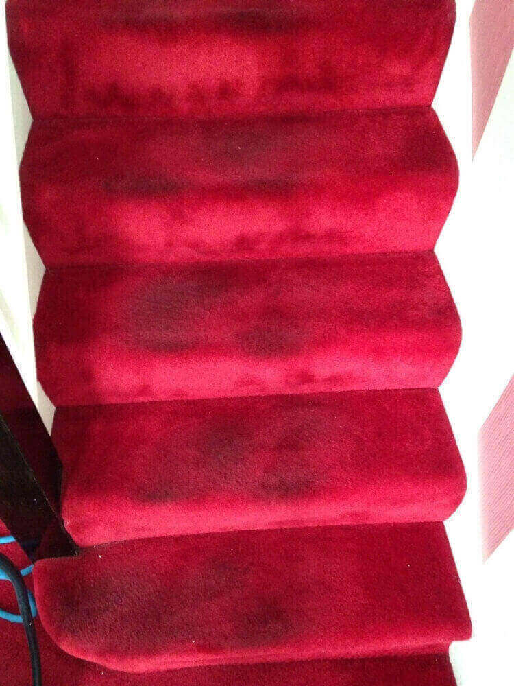 Carpet Cleaning Brunswick St Leamington Spa