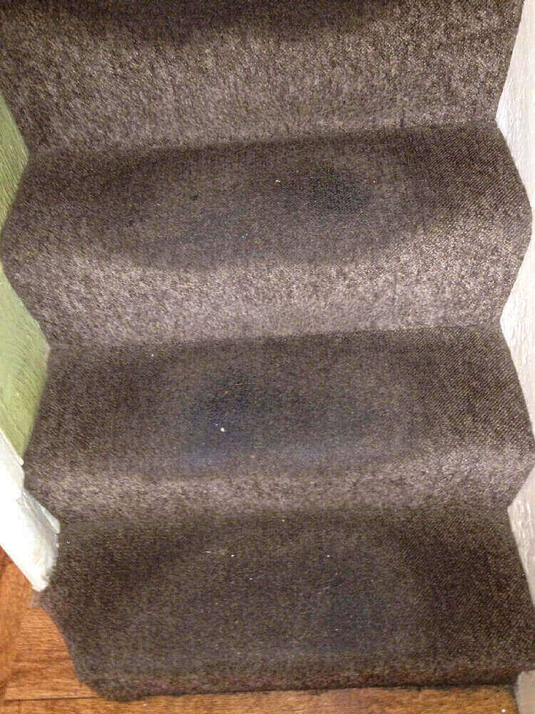 Stair Carpet cleaning Leamington Spa