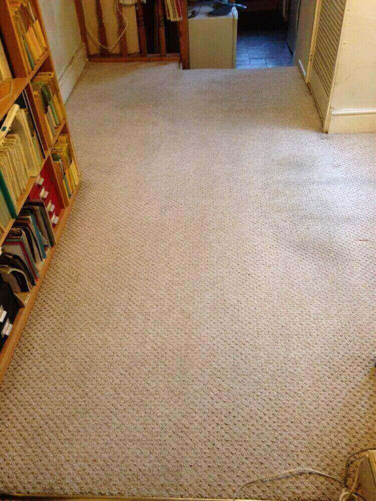 Carpet Stain Removal Leamington Spa