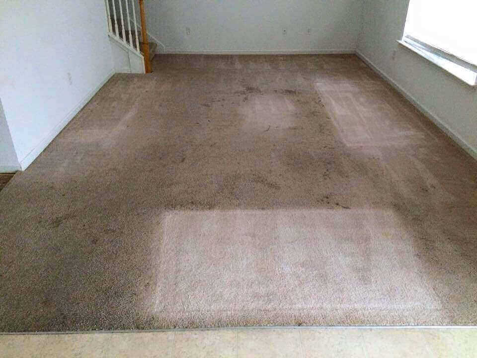 Carpet cleaning Whitnash Leamington Spa
